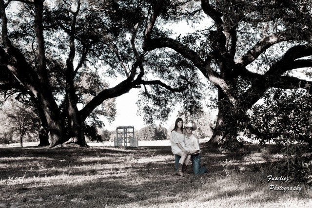 The 200 year old oaks surround you
