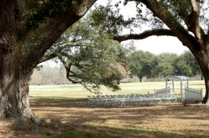 Vintage Louisiana Wedding Venues